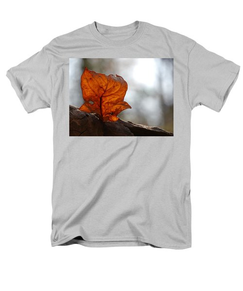 Men's T-Shirt  (Regular Fit) featuring the photograph Tulip Leaf  by Jane Ford