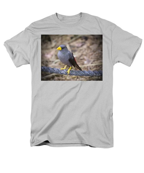 Young Myna Men's T-Shirt  (Regular Fit) by Judy Kay