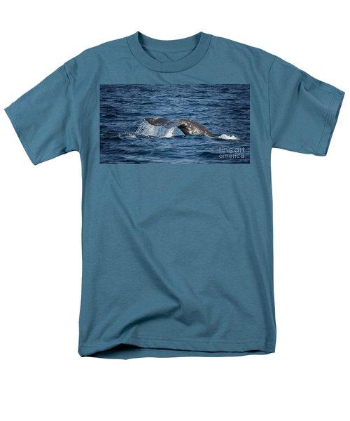 Whale Fluke In Dana Point Men's T-Shirt  (Regular Fit)