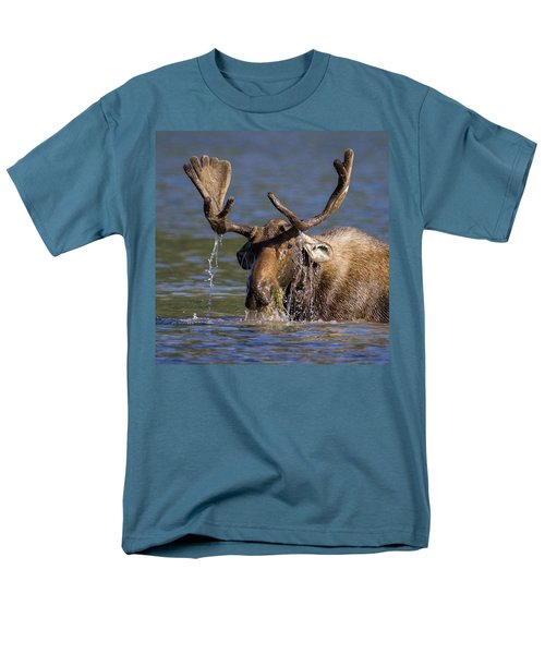 Bull Moose Sampling The Vegetation Men's T-Shirt  (Regular Fit) by Jack Bell