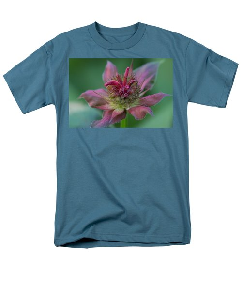 Early Spring Bee Balm Bud Men's T-Shirt  (Regular Fit) by Denyse Duhaime
