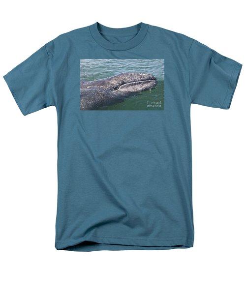 Gray / Grey Whale Eschrichtius Robustus Men's T-Shirt  (Regular Fit) by Liz Leyden