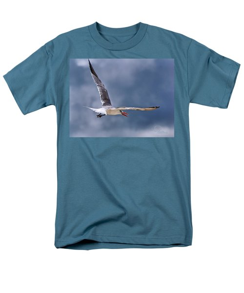 Royal Tern 1 Men's T-Shirt  (Regular Fit) by Ludwig Keck