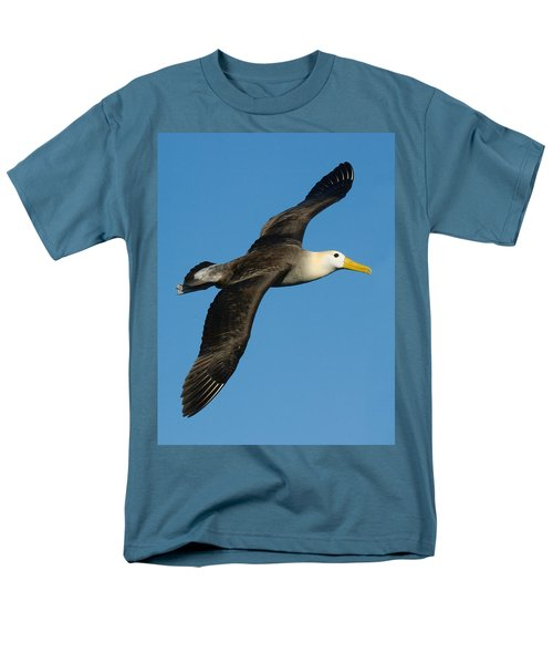 Waved Albatross Diomedea Irrorata Men's T-Shirt  (Regular Fit) by Panoramic Images