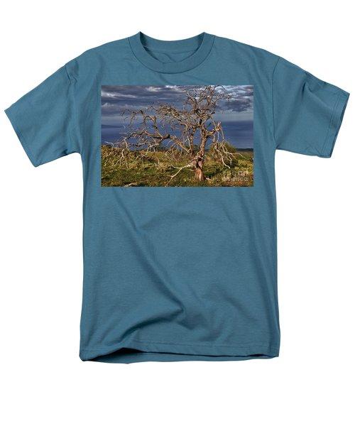 Bare Tree In Hana Maui Men's T-Shirt  (Regular Fit)