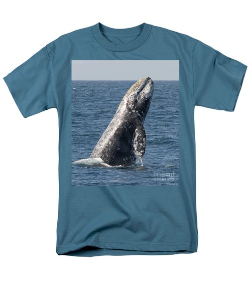Breaching Gray Whale In Dana Point Men's T-Shirt  (Regular Fit) by Loriannah Hespe