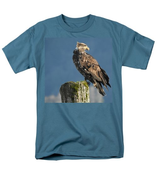 Immature Bald Eagle Men's T-Shirt  (Regular Fit) by Brian Chase