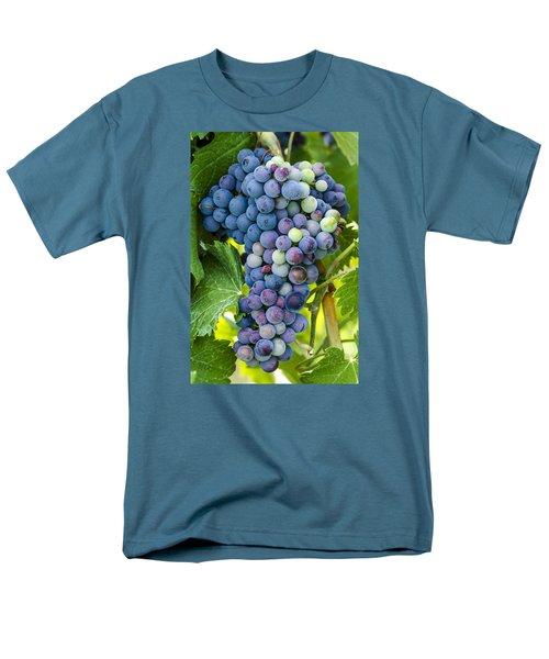 Red Wine Grapes Men's T-Shirt  (Regular Fit) by Teri Virbickis