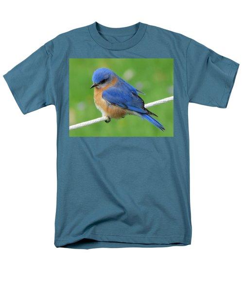 Intense Blue Bird Men's T-Shirt  (Regular Fit) by Betty Pieper