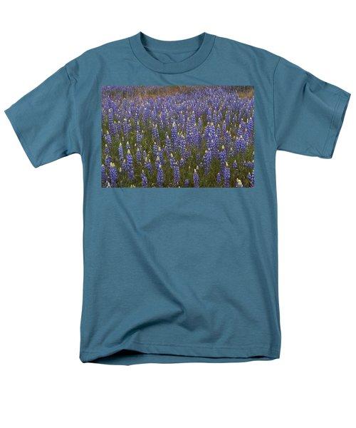 Lupines Men's T-Shirt  (Regular Fit) by Doug Herr