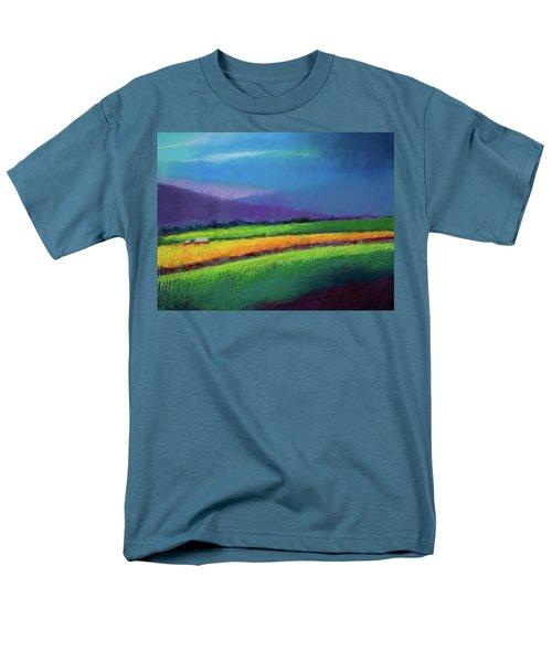 Passing Rain Men's T-Shirt  (Regular Fit) by David Patterson