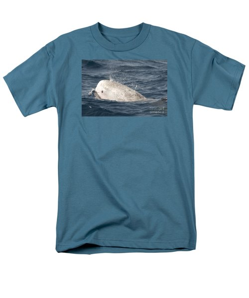 Risso Dolphin Men's T-Shirt  (Regular Fit) by Loriannah Hespe