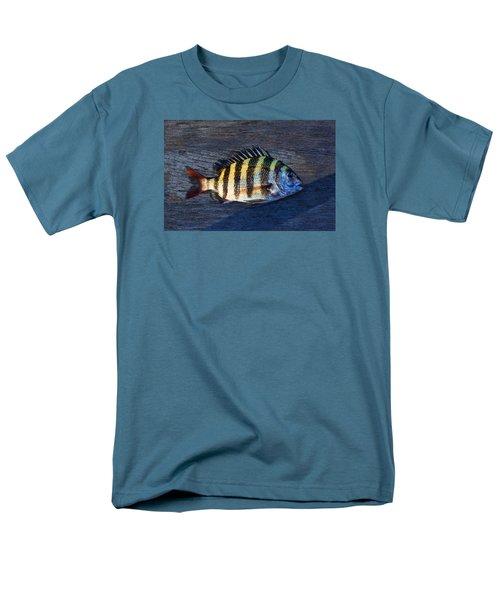 Men's T-Shirt  (Regular Fit) featuring the photograph Sheepshead Fish by Laura Fasulo
