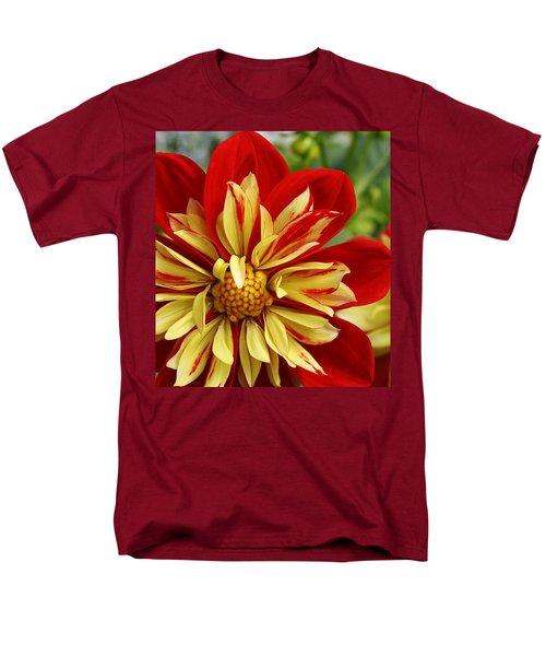Fireworks Men's T-Shirt  (Regular Fit) by Bruce Bley