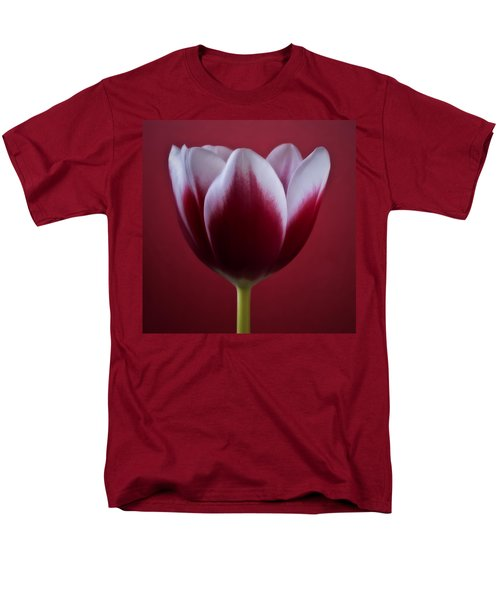 Abstract Red White Flowers Tulips Macro  Photography Art Men's T-Shirt  (Regular Fit) by Artecco Fine Art Photography