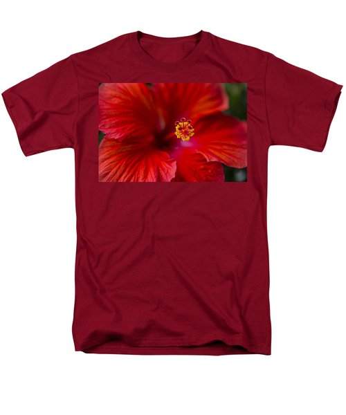 Red Hibiscus Men's T-Shirt  (Regular Fit) by Eduard Moldoveanu