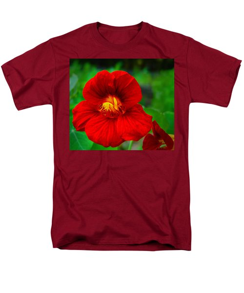 Day Lily Men's T-Shirt  (Regular Fit)