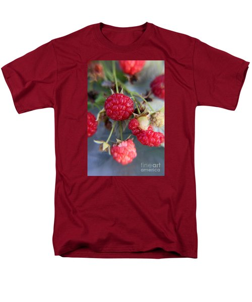Men's T-Shirt  (Regular Fit) featuring the photograph Red Raspberry  by Yumi Johnson
