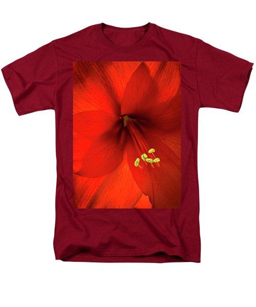 Amaryllis Men's T-Shirt  (Regular Fit) by Denis Lemay