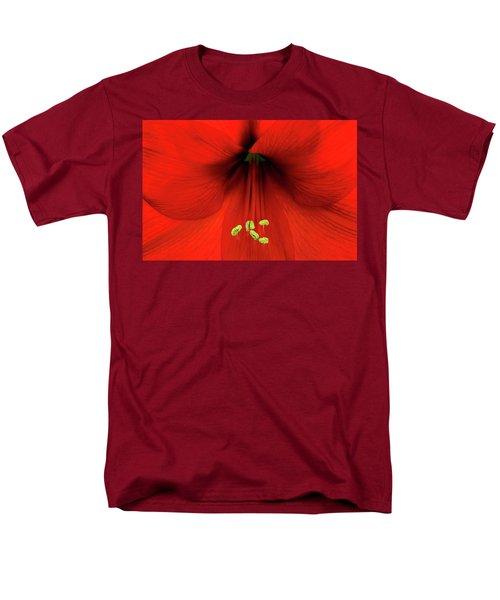 Amaryllis Men's T-Shirt  (Regular Fit)