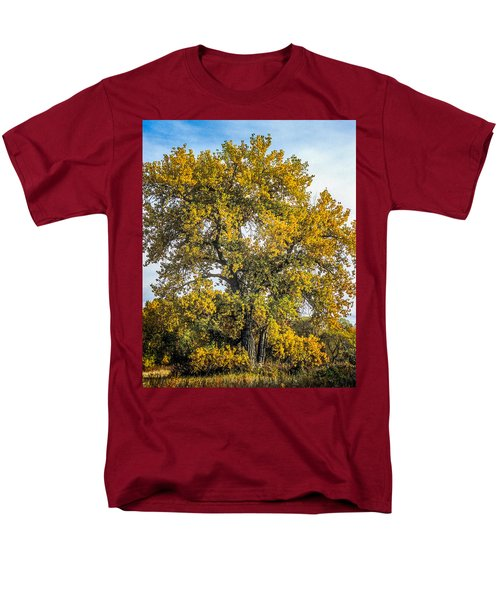 Cottonwood Tree # 12 In Fall Colors In Colorado Men's T-Shirt  (Regular Fit) by John Brink