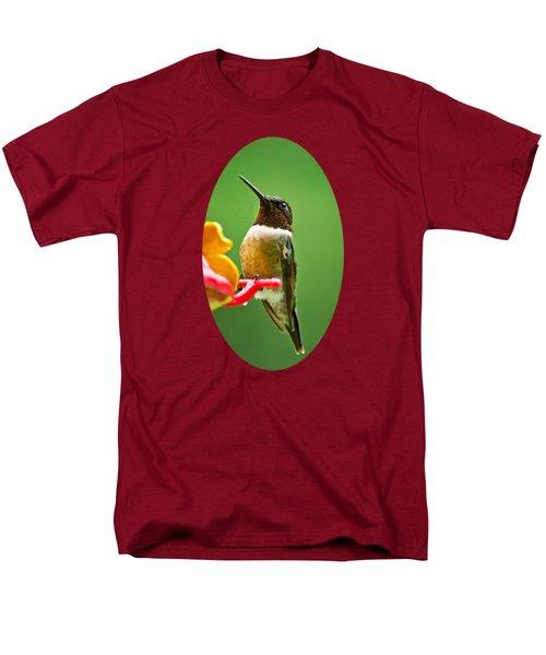 Rainy Day Hummingbird Men's T-Shirt  (Regular Fit)