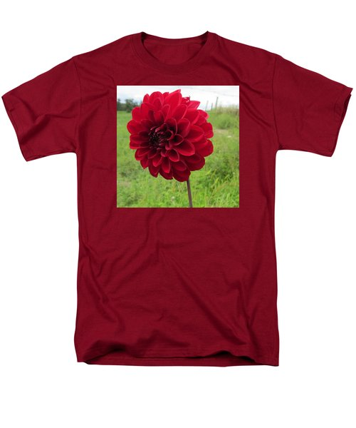 Red, Red, Red Men's T-Shirt  (Regular Fit) by Jeanette Oberholtzer