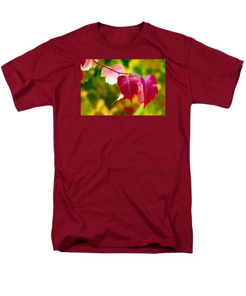 The Little Things That Bring So Much Joy Men's T-Shirt  (Regular Fit)