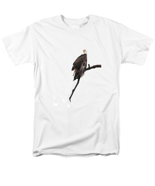 Bald Eagle 5 Men's T-Shirt  (Regular Fit) by David Lester
