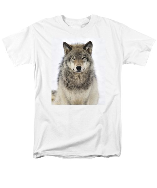 Timber Wolf Portrait Men's T-Shirt  (Regular Fit) by Tony Beck