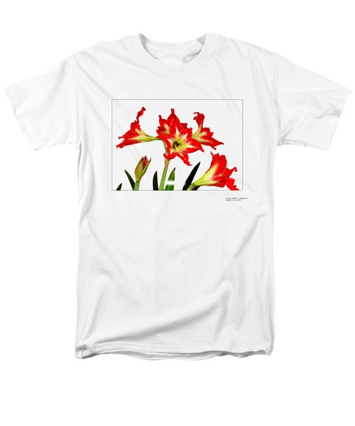 Men's T-Shirt  (Regular Fit) featuring the photograph Amaryllis On White by David Perry Lawrence