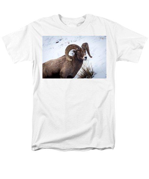 Bighorn Ram Men's T-Shirt  (Regular Fit)