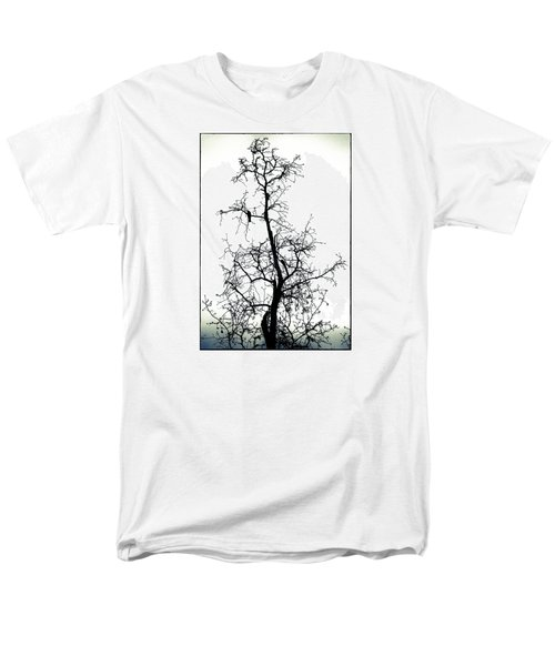 Bird In The Branches Men's T-Shirt  (Regular Fit) by Caitlyn  Grasso