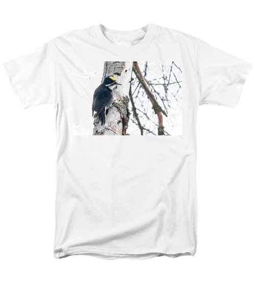 Black-backed Woodpecker Men's T-Shirt  (Regular Fit) by Cheryl Baxter