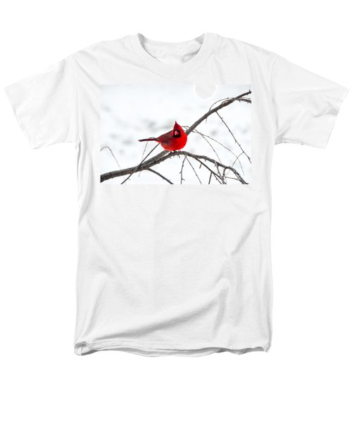 Cardinal On A Branch  Men's T-Shirt  (Regular Fit) by Mary Carol Story
