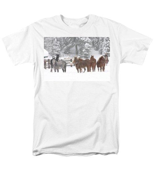 Cold Ponnies Men's T-Shirt  (Regular Fit) by Diane Bohna