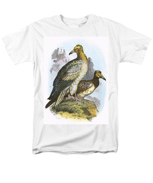Egyptian Vulture Men's T-Shirt  (Regular Fit)