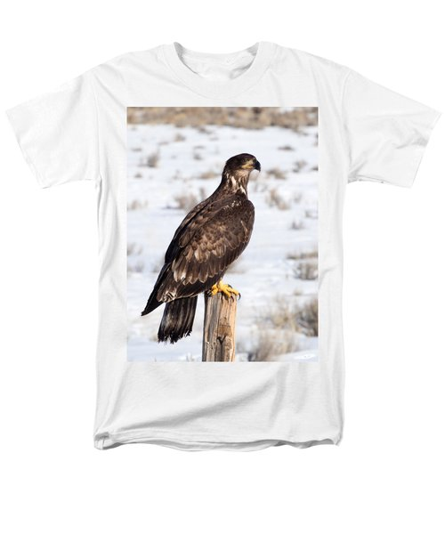 Golden Eagle On Fencepost Men's T-Shirt  (Regular Fit) by Nadja Rider
