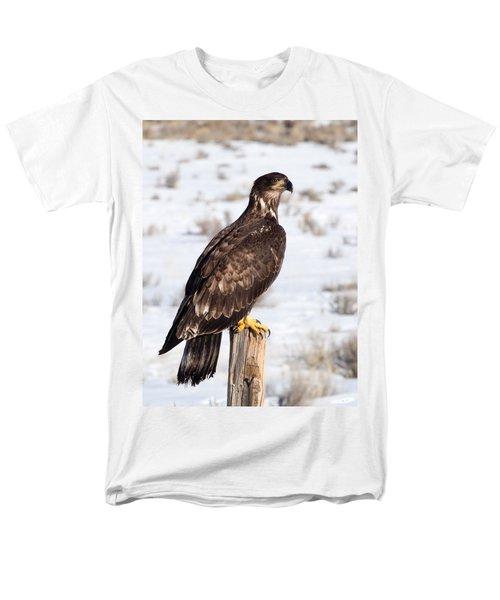 Golden Eagle On Fencepost Men's T-Shirt  (Regular Fit)