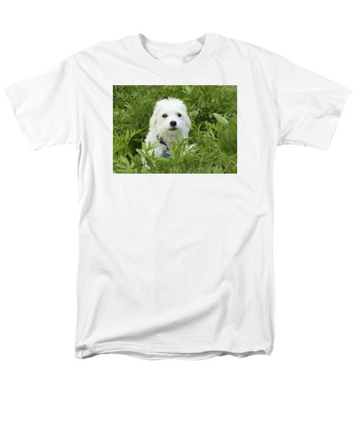 Men's T-Shirt  (Regular Fit) featuring the photograph Oops Busted - Cute White Dog by Jane Eleanor Nicholas