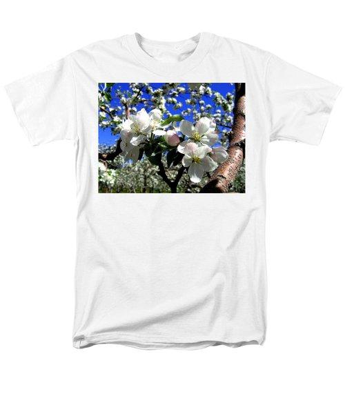 Orchard Ovation Men's T-Shirt  (Regular Fit)