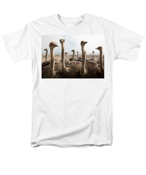 Ostrich Heads Men's T-Shirt  (Regular Fit) by Johan Swanepoel