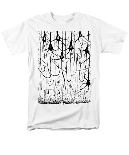 Pyramidal Cells Illustrated By Cajal Men's T-Shirt  (Regular Fit) by Science Source