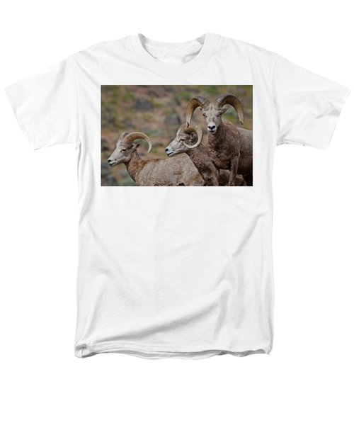 Rams In Three Men's T-Shirt  (Regular Fit) by Athena Mckinzie