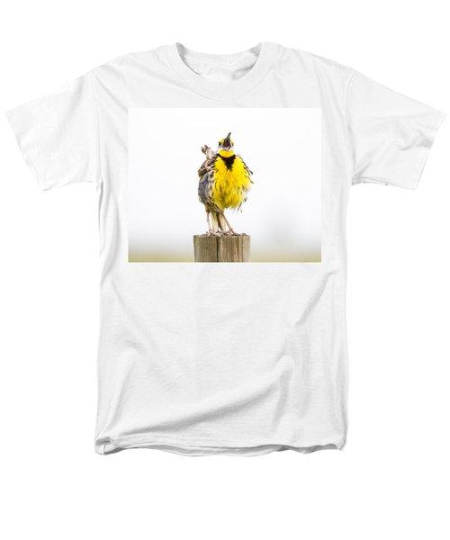 Singing Meadowlark 2 Of 3 Men's T-Shirt  (Regular Fit) by Bill Swindaman