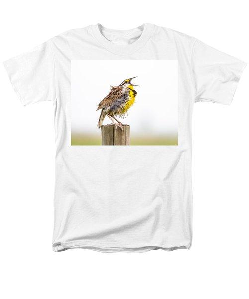 Singing Meadowlark 3rd Of 3 Men's T-Shirt  (Regular Fit) by Bill Swindaman