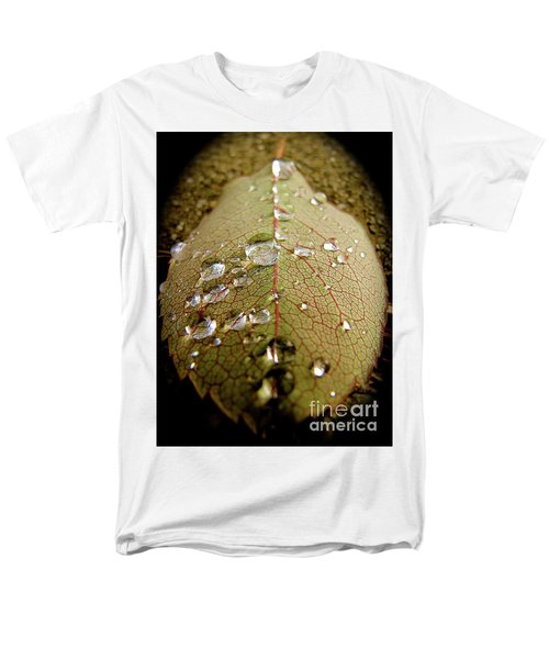 The Leaf After Rain Men's T-Shirt  (Regular Fit) by CML Brown