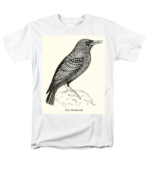 The Starling Men's T-Shirt  (Regular Fit) by English School