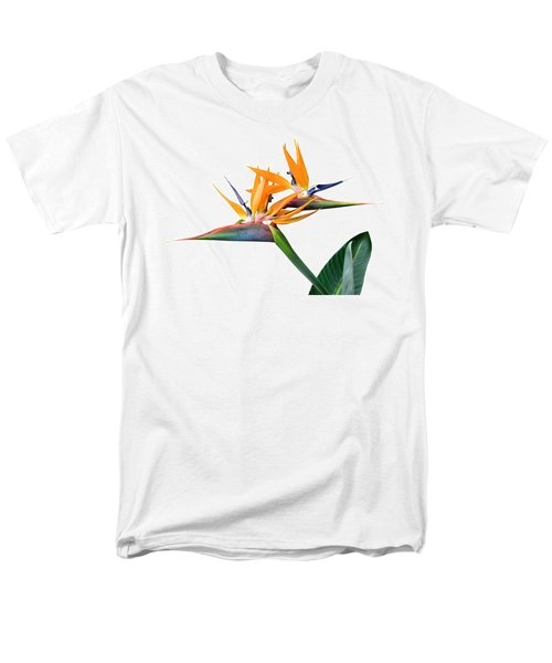 Three Heads Are Better Than One Men's T-Shirt  (Regular Fit) by Denise Bird