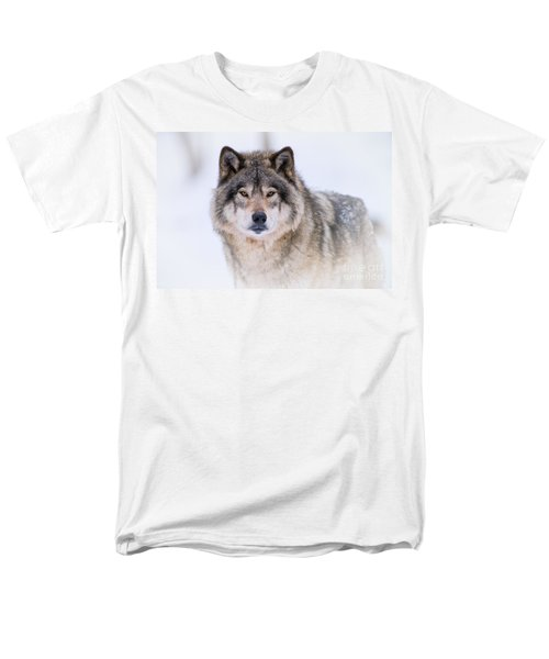 Timber Wolf Pictures 256 Men's T-Shirt  (Regular Fit) by Wolves Only